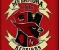 Metamora Township High School